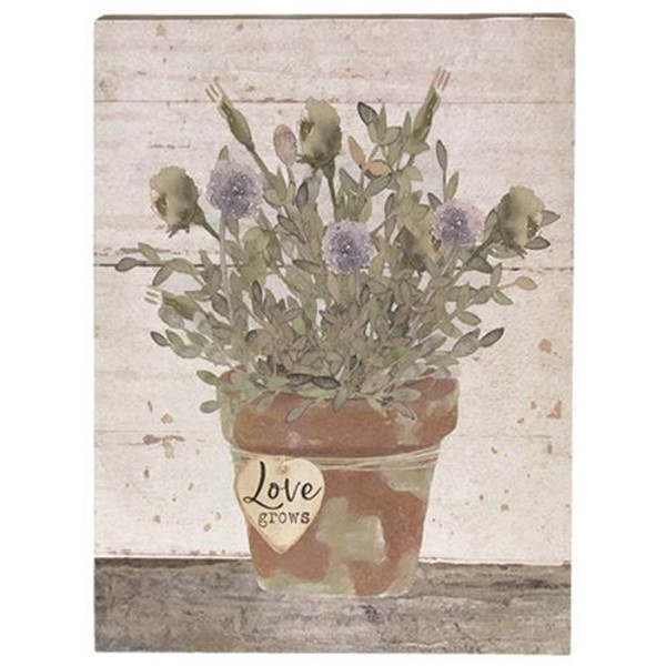 Love Grows Box Sign (Pack Of 5) G34315 By CWI Gifts