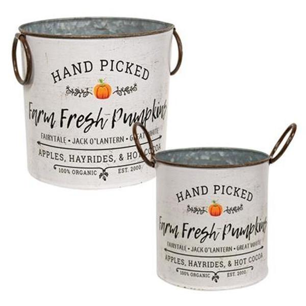 2/Set Farm Fresh Pumpkins Buckets GMFF964212S By CWI Gifts