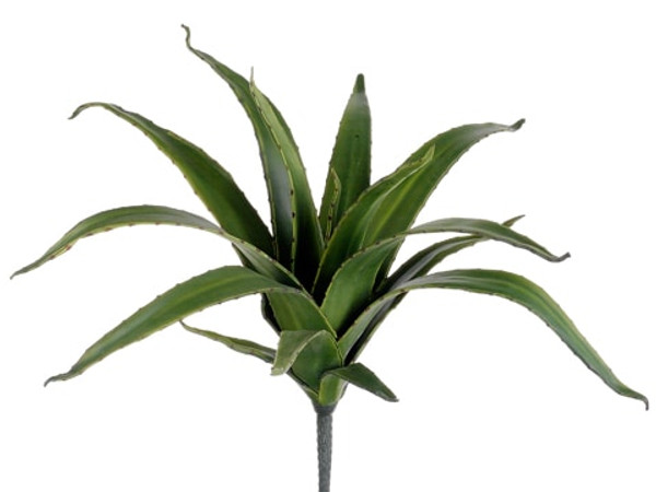 """20"""" Agave Plant Green (Pack Of 6) CA4021-GR By Silk Flower"""