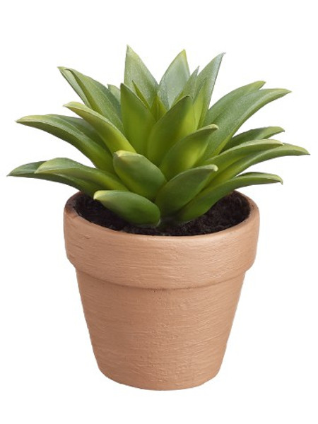"6""H Succulent In Pot Two Tone Green (Pack Of 4) LQS542-GR/TT By Silk Flower"