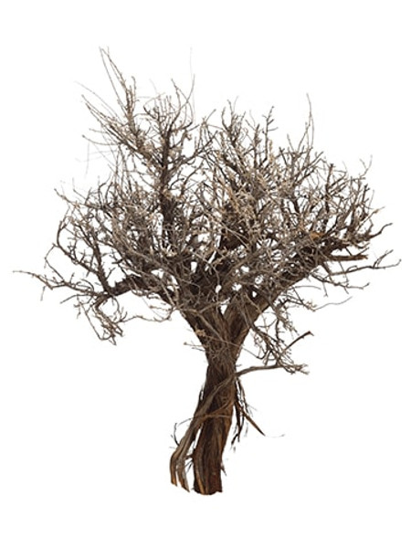"10""-14"" Na Mini Sculpture Tree Sage ZAS221- By Silk Flower"