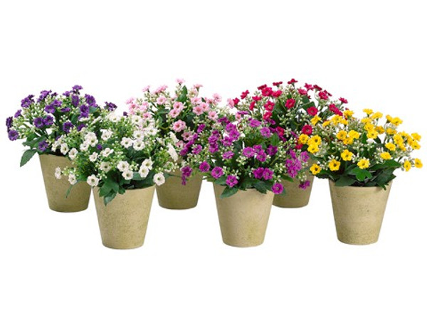 "8"" Sweet William In Paper Mache Pot (2 Ea/6 Colors) Assorted (Pack Of 12) LFS731-ASST By Silk Flower"