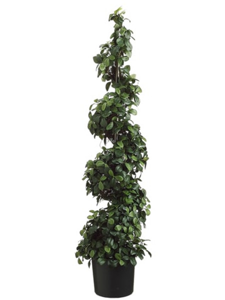 """48"""" Citrus Leaf Spiral Topiary In Pot Two Tone Green (Pack Of 2) LPC234-GR/TT By Silk Flower"""