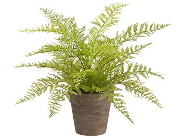 "12"" Soft Fern In Paper Mache Pot Green (Pack Of 4) LQF012-GR By Silk Flower"