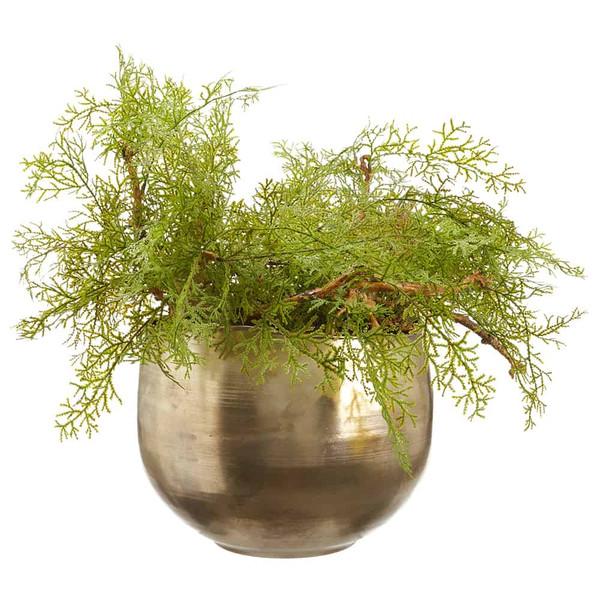 "20.5""H X 28.5""W X 28.5""L Selaginella In Metal Pot Green WP8250-GR By Silk Flower"