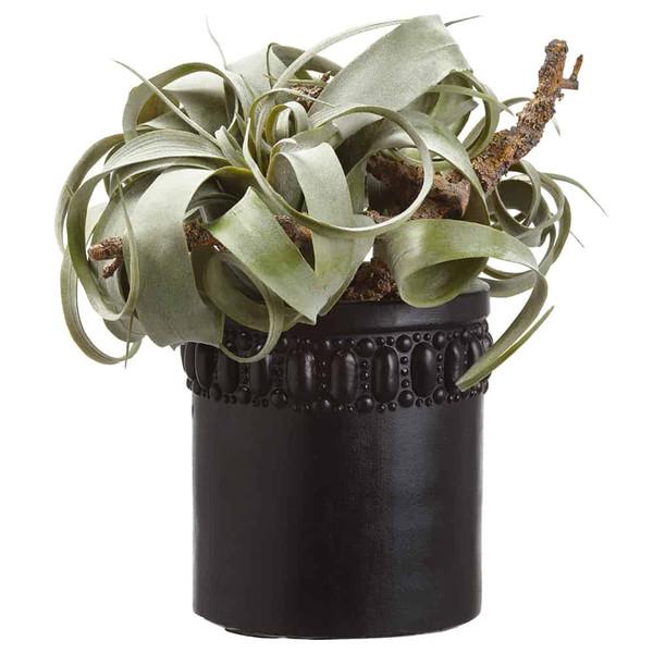 "11""H X 10""W X 10""L Tillandsia/ Driftwood In Cement Pot Grey Green WP8253-GR/GY By Silk Flower"