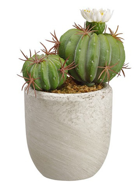"6.25"" Cactus In Pot In Re-Shippable Box White Green (Pack Of 6) ZQS185-WH/GR By Silk Flower"