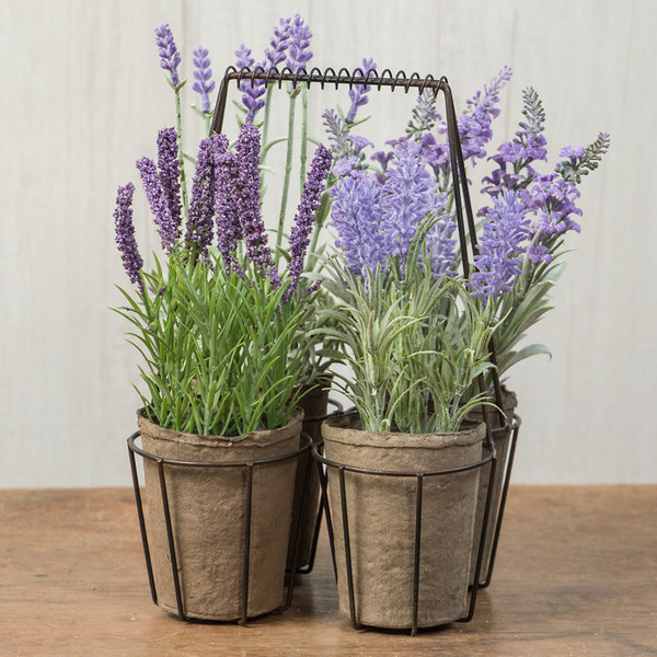 Ragon Set/ 4 Assorted Lavenders In Metal Container (Pack Of 4) OR166270
