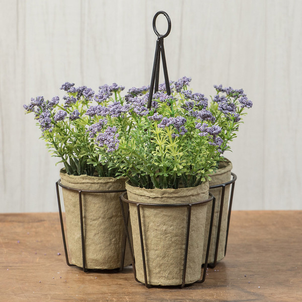 Ragon Set/ 3 Purple Yarrow In Metal Container (Pack Of 4) OR166291