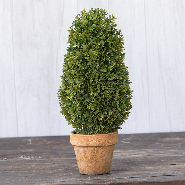 """Ragon 11"""" Cedar Trimmed Cone Topiary (Pack Of 6) ST168025"""