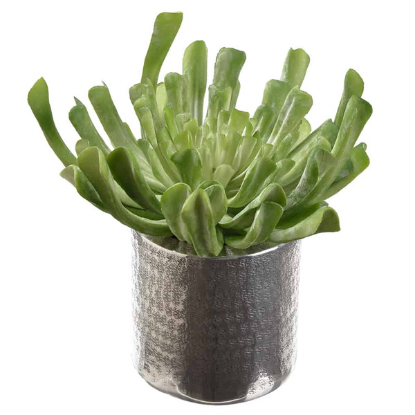 "10.5""H X 9""W X 9.5""L Echeveria In Planter Green WF9402-GR By Silk Flower"