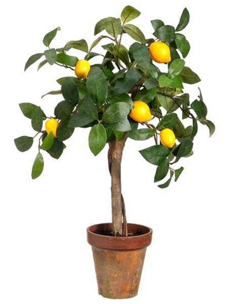 """22"""" Young Lemon Topiary InPaper Mache PotYellow (Pack Of 4) LQR757-YE By Silk Flower"""