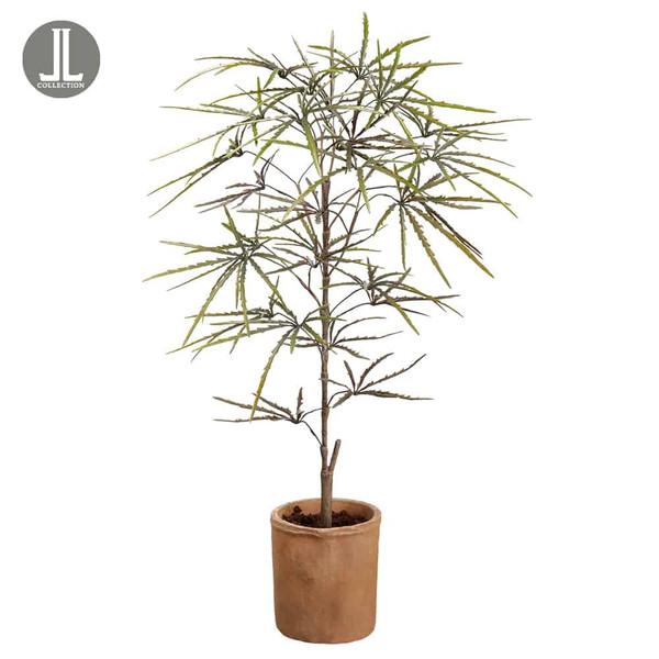"35"" False Aralia Tree InTerra Cotta PotGreen (Pack Of 4) LPA177-GR By Silk Flower"