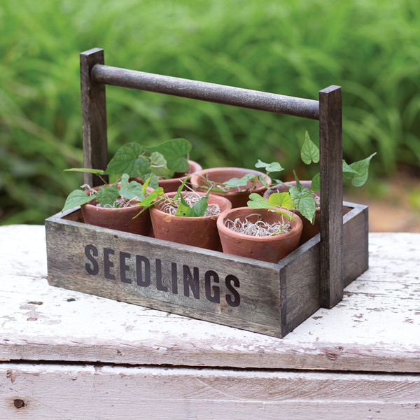 CTW Home Seedling Pots Caddy 370440