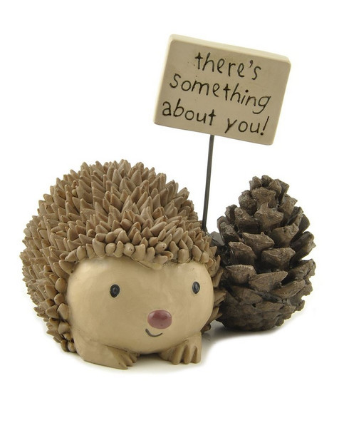 1412-89337 Blossom Bucket Hedgehog With Pinecone / Sign - Pack of 6