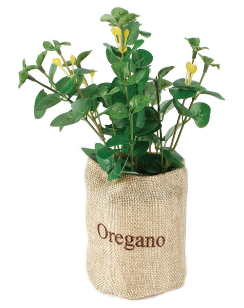 143-70737 Blossom Bucket Herbs In Flax Bag - Pack of 7