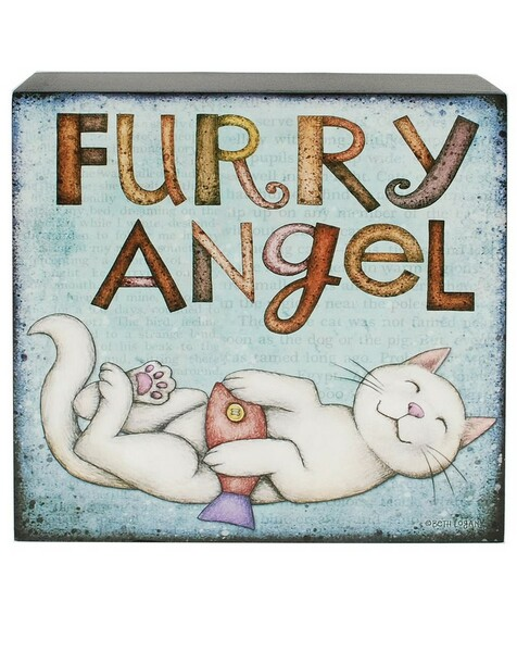 1466-38965 Blossom Bucket Furry Angel Cat Wall Box Sign - Pack of 7