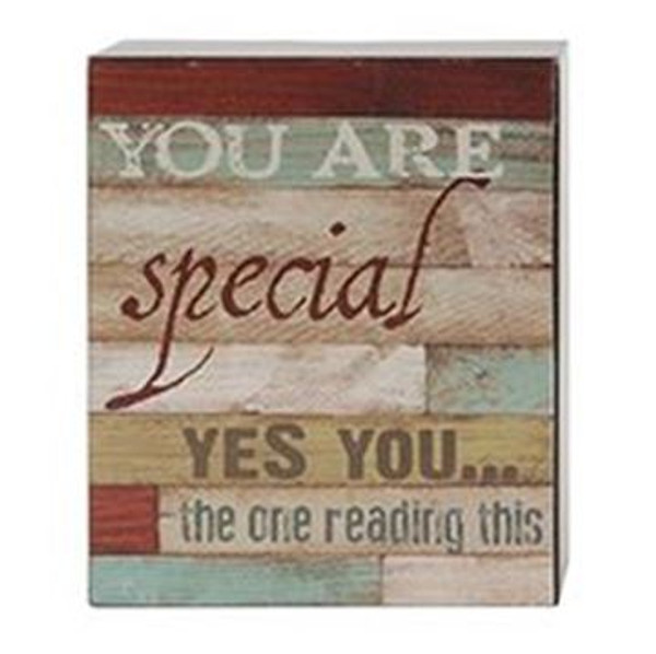 161-37488 Blossom Bucket You Are Special Wall Box Sign - Pack of 6