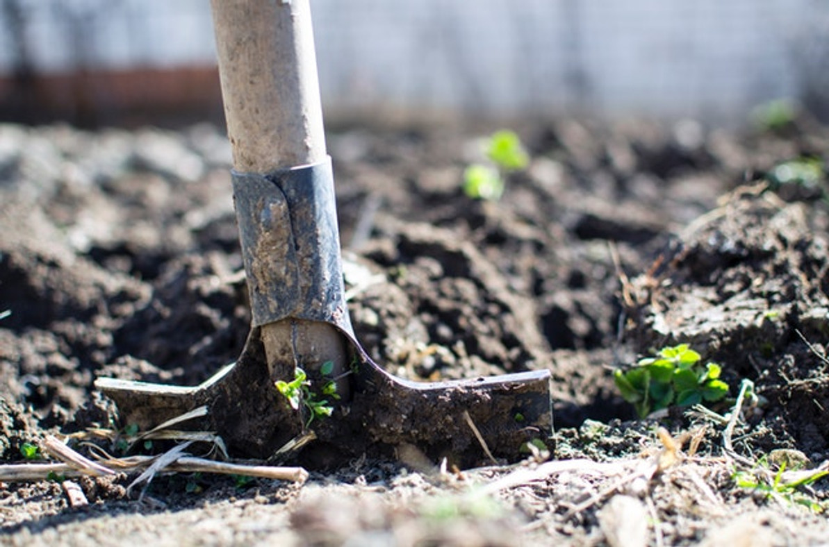 10 Top Uses for Raw Land