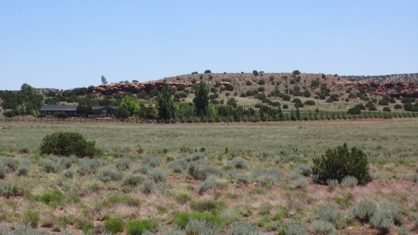Walk to Wine Tasting Lot Concho AZ $2,411