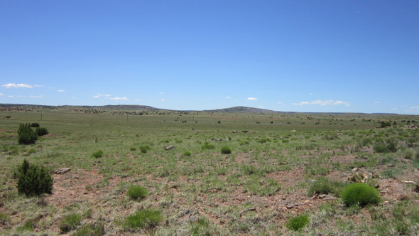 0.69 Acre Lot near Vineyard Arizona $2,571