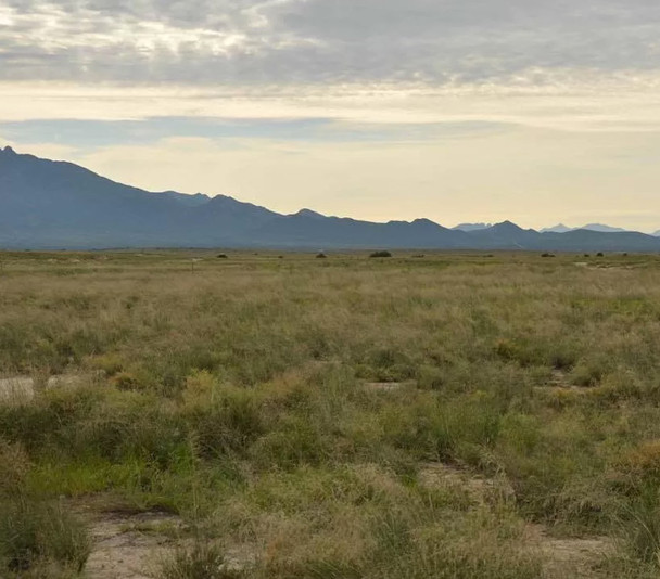 Quarter Acre Wilcox AZ Buy in Full $999