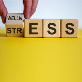 8 Habits for A Healthier Stress Response