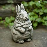 Standing Bunny Garden Statue