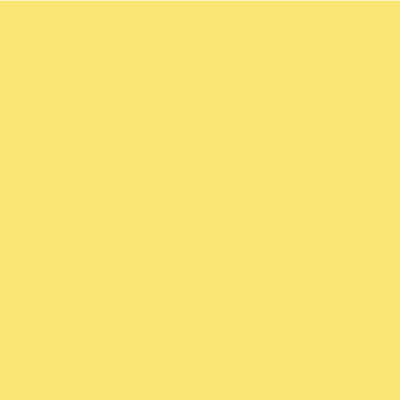Calla Yellow