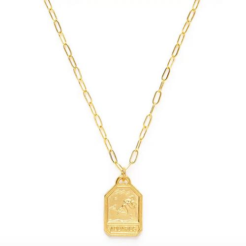 Zodiac Dog Tag Medallion  - Aquarius