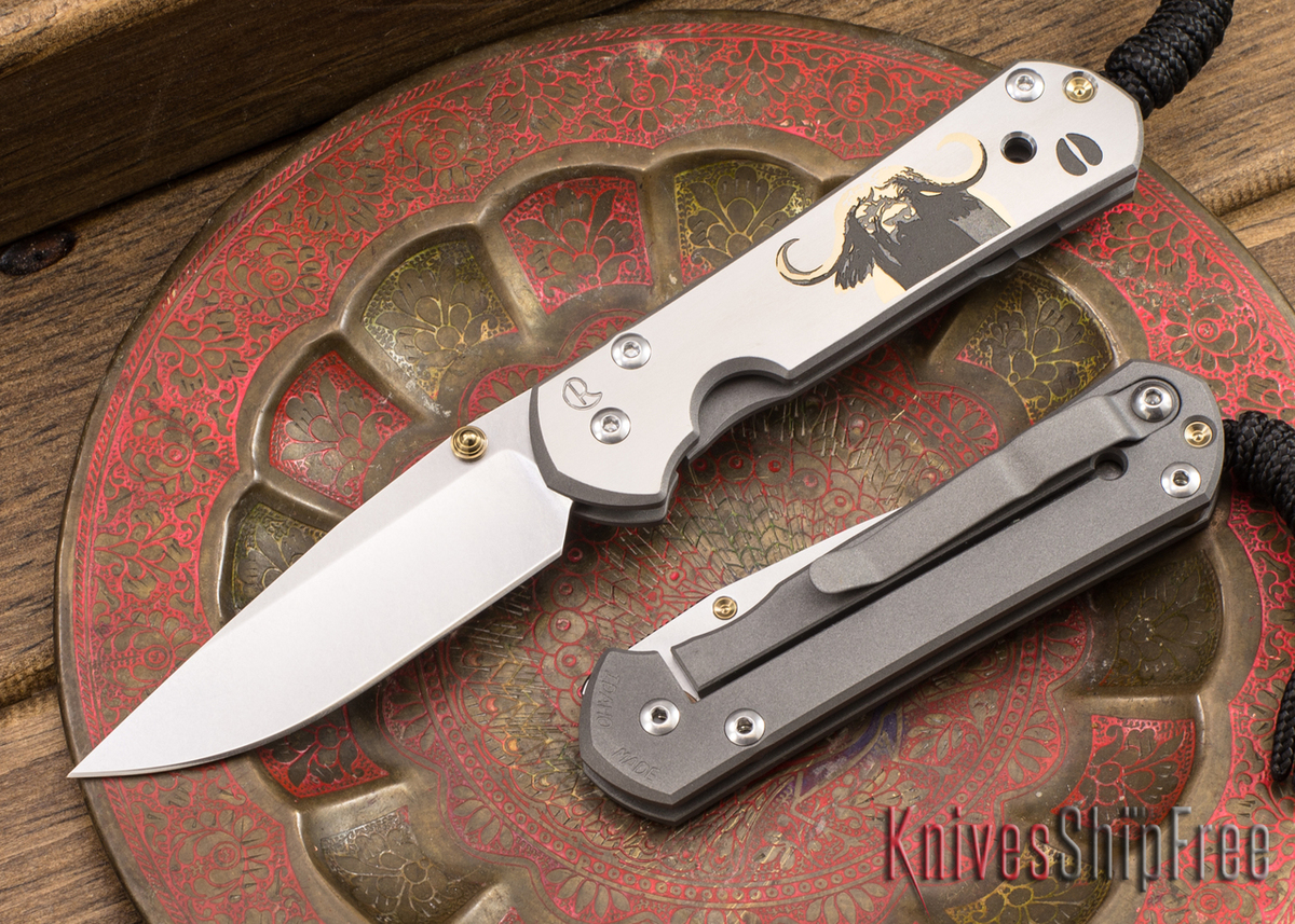 Chris Reeve Knives: Small Sebenza 21 - CGG Cape Buffalo primary image