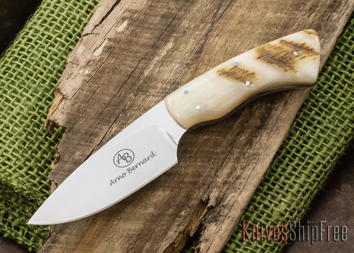 Arno Bernard Knives: Bush Baby Series - Gecko - Sheep Horn - 121010 primary image