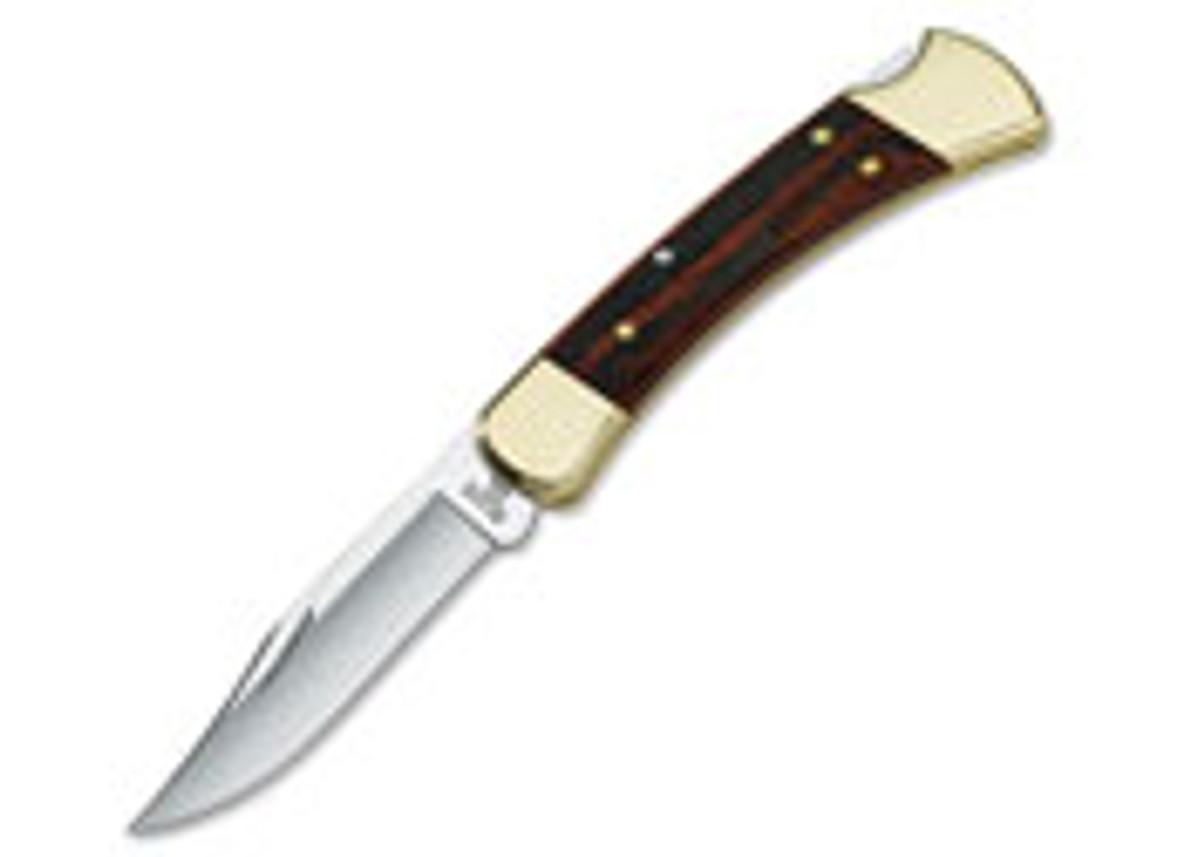 Buck Knives: 110 Folding Hunter primary image