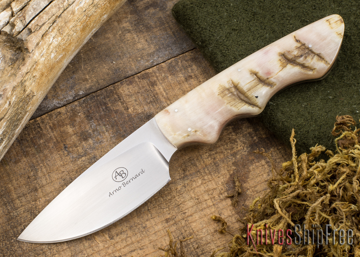 Arno Bernard Knives: Predator Series - Great White - Sheep Horn - 112321 primary image