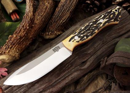 Kalahari Hunter