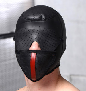 Scorpion Hood With Removable Blindfold And Face Mask