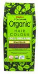 Radico Organic Hair Colour Powder Wheat Blonde | 8902670020772