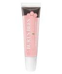 Burt's Bees Lip Shine Whisper | 792850020351