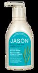 Jason Purifying Tea Tree Body Wash   078522030270