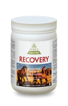 Purica Recovery EQ Powder 1 kg | 815555001101