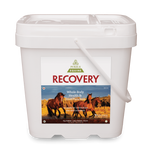 Purica Equine Recovery  Powder 5 kg | 815555001118