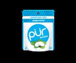 Pur Aspartame-Free Mint Bag Peppermint | 830028001099