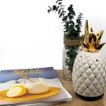 Relaxus Golden Pineapple Ultrasonic Aroma Diffuser | 628949071167