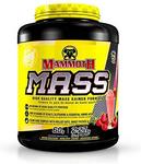 Mammoth Mass Strawberry 5 lb | 625486101104