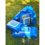 GoGoLife Ezee Wipes 75% Alcohol - Pack of 60 | 0514497182892