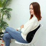 Relaxus Chiro Pro Active Sitting Spine Support | REL-703276