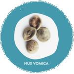 Boiron Nux Vomica Compose Indigestion Relief 3 x 4g Tubes | 774016837157  |Nux Vomica