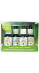 New Roots Herbal Exotic Oils Gift Set Organic Exotic Oils Collection - 628747517416