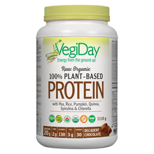 VegiDay Raw Organic 100% Plant-Based Protein Decadent Chocolate | 628235330190