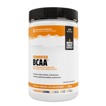 North Coast Naturals Fermented BCAA Unflavoured 300 grams | 627933100548